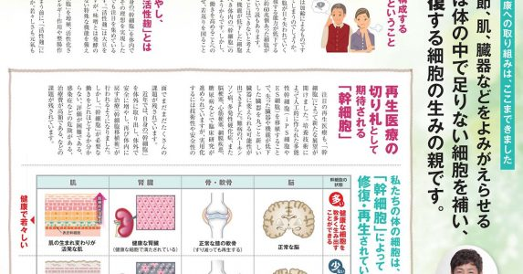 「幹細胞」は体の中で足りない細胞を補い、細胞を修復する細胞の生みの親です_ライフトレードニュース_1705